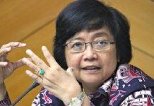 Menteri Lingkungan Hidup dan Kehutanan (KLHK) Siti Nurbaya Bakar sudah langsung turun ke lapangan memantau penanganan kebakaran hutan dan lahan (Karhutla). Foto : Lampungpro.com