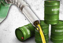 Penurunan harga biodiesel terjadi akibat menurunnya harga minyak kelapa sawit. Foto : freemalaysiatoday.com