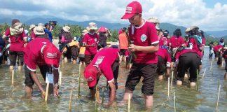 Kegiatan menanam mangrove itu merupakan agenda hari kelima KBN IX yang digelar di Kabupaten Parigi Moutong, Sulawesi Tengah. Foto : Sulteng Terkini