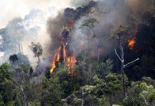 Satgas Karhutla terus meminimalisir titik api yang ada di Provinsi Jambi agar Karhutla tidak meluas. Foto : Environment Indonesia Center