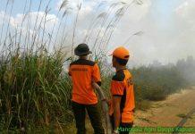 Pasukan Manggala Agni KLHK tersebar di berbagai daerah untuk memadamkan api di beberapa titik kebakaran. Foto : Kementerian LHK