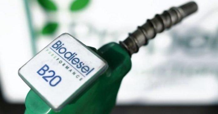 Pengembangan biodiesel saat ini masih tergantung pada insentif yang diberikan oleh Badan Pengelola Dana Perkebunan Kelapa Sawit (BPDPKS) untuk industri biodiesel. Insentif yang diberikan akan membengkak jika selisih harga FAME dari sawit sebagai input biodiesel lebih tinggi dari harga solar. Foto : iNews.id