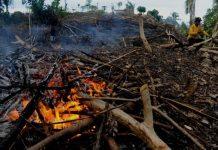 Data kebakaran hutan dan lahan sejauh ini 90 persen karena ulah manusia. Foto : Antara