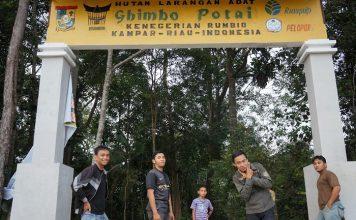 Potensi hutan adat yang menyebar di sejumlah kabupaten di Provinsi Riau mencapai 300.000 haktare. Foto : kerjaforester.blogspot.com