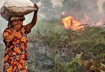 Pelaku kebakaran hutan dan lahan menyebabkan dampak yang merugikan bagi masyarakat. Foto : BeritaHati.com