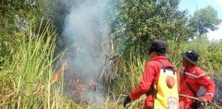 Manggala Agni masih terus melakukan pemadaman di beberapa titik di Kalimantan Tengah seperti di Katingan, Murung Raya, dan Palangkaraya. Foto : Kementerian LHK
