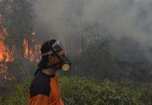 Pemerintah tahun ini mengawal ketat wilayah rawan kebakaran hutan dan lahan, sehingga berhasil menurunkan jumlah titik api hingga 96,5 persen di seluruh Indonesia dalam periode 2015-2017. Foto : Antara