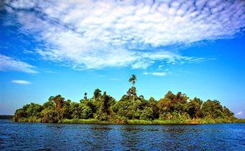 Pulau di Danau Pulau Besar, Danau Zamrud Siak, di kawasan Taman Nasional Zamrud di Siak Riau yang berada di lahan gambut seluas 31.480 hektare. Foto : oknusantara.com