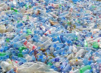 Ada lima jenis sampah plastik yang mendominasi di lingkungan, yaitu kantong plastik sekali pakai, pet botol, sedotan, styrofoam, dan sachet. Foto : Greeners.Co