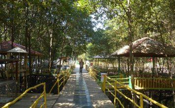 Kesejukan alam dan letaknya yang strategis karena berada di tengah Kota Bontang, menjadikan BMP sebagai tempat yang tepat untuk refreshing dan meghilangkan kejenuhan. Foto : Wisata Mangrove Bontang