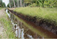 Ekosistem Hutan Lindung Gambut Sungai Bram Itam akan dipulihkan dengan strategi penataan zonasi dan program perhutanan sosial. Foto : KLHK