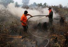 Badan Meteorologi Klimatologi dan Geofisika (BMKG) Stasiun Pekanbaru telah mendeteksi tujuh titik panas yang mengindikasikan kebakaran hutan dan lahan (Karhutla) di Provinsi Riau. Foto : Kantor Berita Kemanusiaan