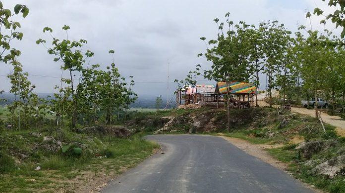 Taman Hutan Raya Bukit Soeharto termasuk satwa-satwa dan habibat-habitannya, akan tetap terjaga ketika pemerintah memindahkan Ibu Kota RI ke Kalimantan Timur. Foto : Sasi Kirana