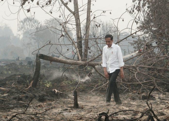Presiden Joko Widodo menghargai kerja keras segenap jajaran yang terkait untuk memadamkan Karhutla di Sumatera dan Kalimantan. Foto : Setkab