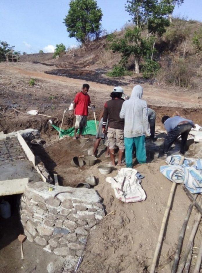 Program padat karya berbasis pertanian harus menjadi ujung tombak untuk menekan angka kemiskinan, khususnya di desa, serta mengangkat kesejahteraan petani. Foto: Kementan