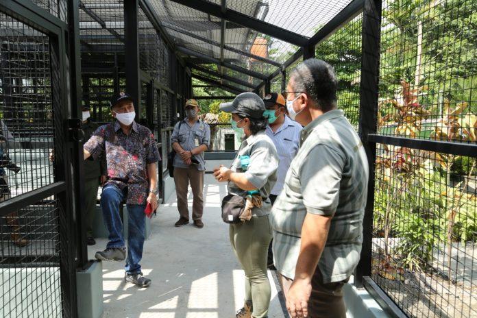 Dirjen KSDAE Wiratno saat mendengarkan penjelasan manajemen Gembira Loka, soal pakan satwa tak ada masalah. Foto: KLHK