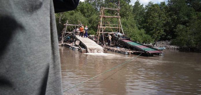 Karena perambahan di kawasan mangrove, kalangan nelayan