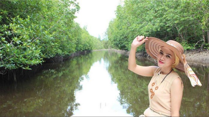 Keberadaan mangrove Munjang ini dapat mencegah terjadinya banjir yang sebelumnya sering melanda kawasan ini dan dampak ekonomi turut dirasakan juga khususnya oleh nelayan tradisional. Foto: You Tube