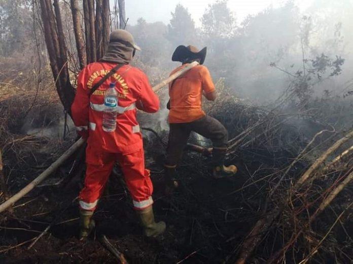 Rentannya hutan dan lahan Indonesia terhadap api, pencegahan dan pengendalian sudah tentu harus selalu dilakukan. Foto: KLHK