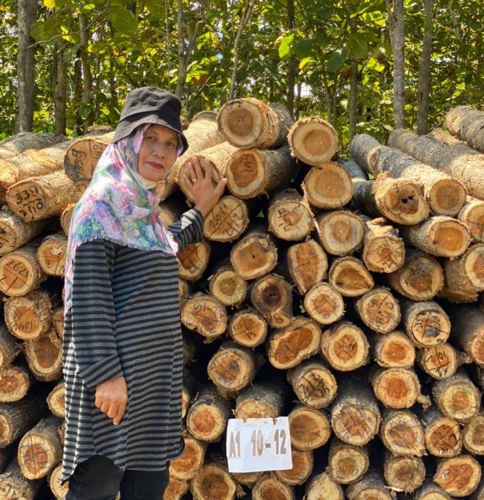 Ketua Paguyuban Bukit Seribu Sudarmi mengatakan pendekatan pasar mampu memberikan perbedaan dimana harga jual kayu kelompoknya mendapatkan harga yang optimal dan merata. Foto: KLHK