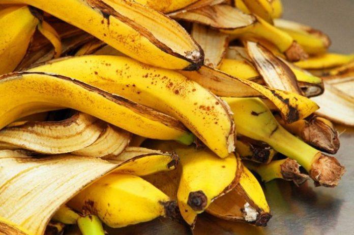 Limbah kulit pisang bisa diubah menjadi material untuk konstruksi. Foto: notif.id