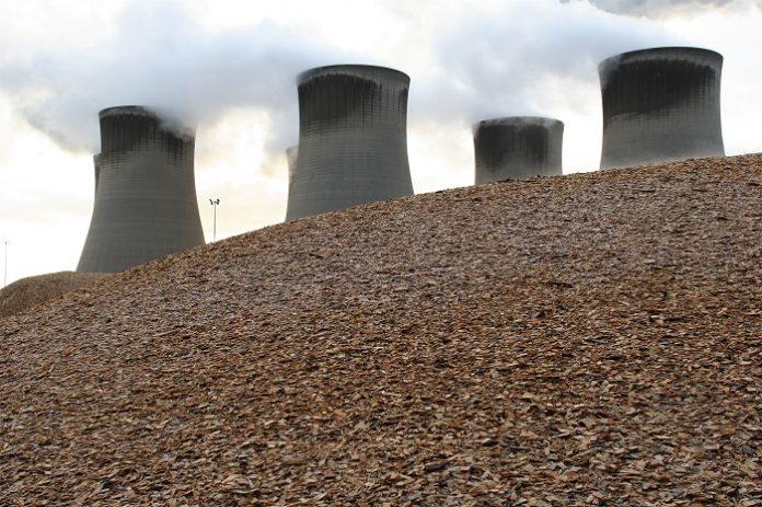 Cofiring biomassa dalam proses pembangkitan listri di PLTU dapat mengurangi konsumsi batu bara dan menurunkan emisi gas rumah kaca. Foto: Global Wood Markets Info