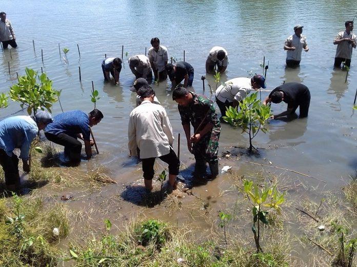 Ekosistem pesisir di Indonesia terutama mangrove, padang lamun dan kawasan rawa payau memiliki potensi cadangan karbon biru yang sangat besar, yaitu sebagai penyerap serta penyimpan karbon alami yang kapasitasnya melebihi hutan tropis daratan.Foto: Dewan Kelautan dan Perikanan